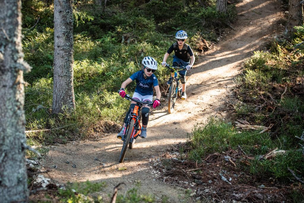 Mountainbike Trail auf der Reiteralm